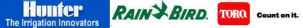 napoqvane.com